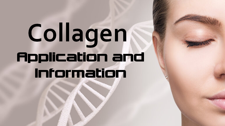Collagen-Blog-Photo.png